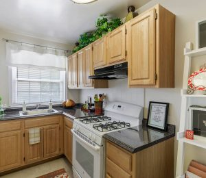 Worthington Woods kitchen